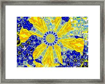 Yellow Flower On Blue Framed Print by Navo Art
