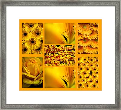 Yellow Flowers Collection. Polyptych Framed Print by Jenny Rainbow