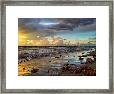 Yellow Glow Framed Print