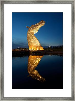Yellow Head Reflected Framed Print by Stephen Taylor