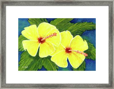 Yellow Hibiscus Flower #292 Framed Print by Donald k Hall