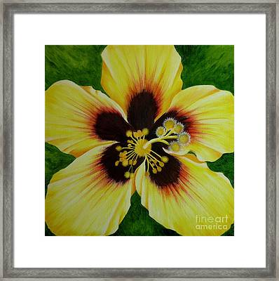 Yellow Hibiscus Macro Framed Print by Mary Deal