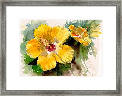 Yellow Hibiscus Framed Print by Yolanda Koh