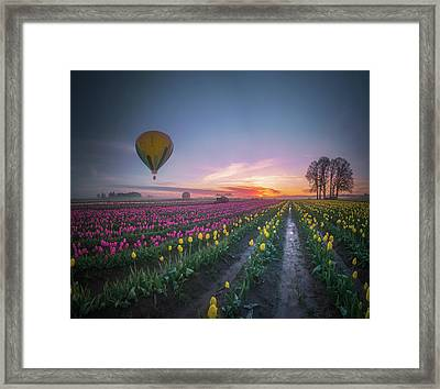 Framed Print featuring the photograph Yellow Hot Air Balloon Over Tulip Field In The Morning Tranquili by William Lee
