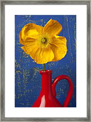 Yellow Iceland Poppy Red Pitcher Framed Print by Garry Gay
