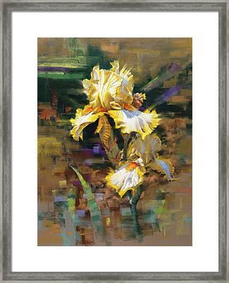 Yellow Iris II Framed Print