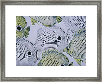 Tropical Jewels Framed Print