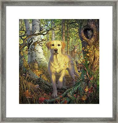 Yellow Lab In Fall Framed Print