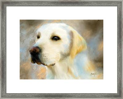 Yellow Lab Portrait Framed Print