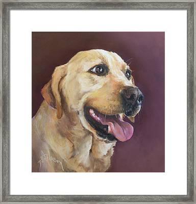 Yellow Labrador Framed Print by Debbie Anderson