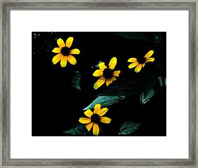 Yellow Framed Print by Laura DAddona