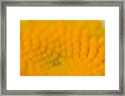 Yellow Framed Print by Leonard Voicu