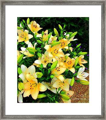 Framed Print featuring the photograph Yellow Lilies 2 by Randall Weidner