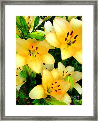 Framed Print featuring the photograph Yellow Lilies 3 by Randall Weidner