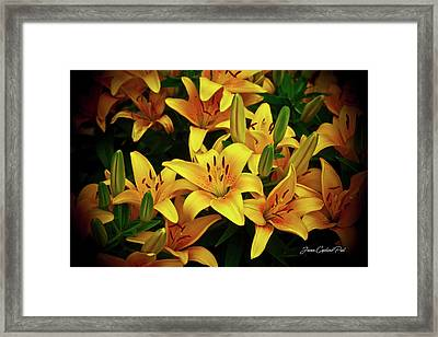 Framed Print featuring the photograph Yellow Lilies by Joann Copeland-Paul
