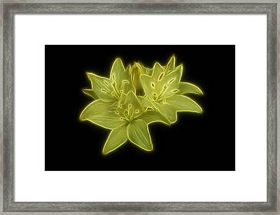 Yellow Lilies On Black Framed Print by Sandy Keeton