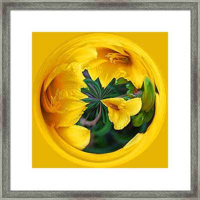 Framed Print featuring the photograph Yellow Lily Orb by Bill Barber