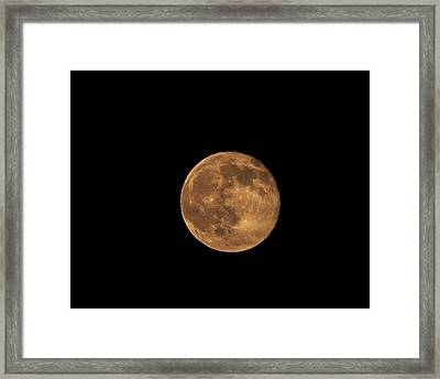 Yellow Moon Framed Print by Gunter Nezhoda