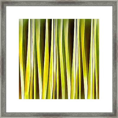 Yellow Ochre And Brown Stripy Lines Pattern Framed Print