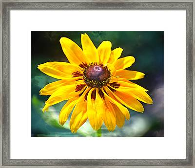 Yellow One Framed Print by Marty Koch