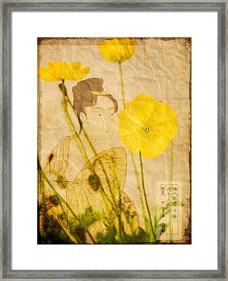 Yellow Poppies Framed Print by Wesley Phillips