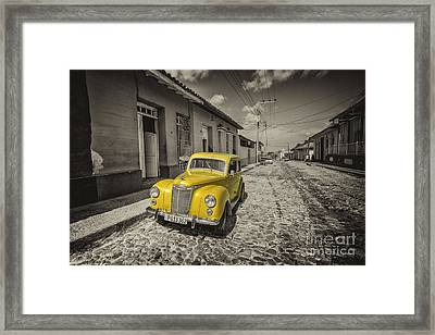 Yellow Prefect  Framed Print