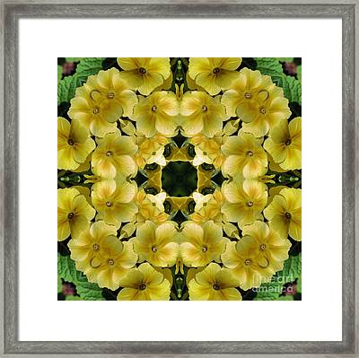 Yellow Primrose Kaleidoscope Framed Print