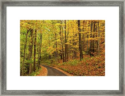 Yellow Road Framed Print by Teresa Jack