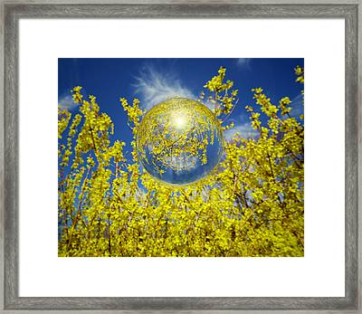Framed Print featuring the photograph Yellow by Robert Geary