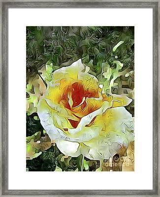 Yellow Rose 04 ...21.39 Rose Rose Image Framed Print