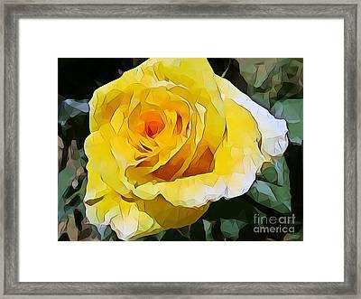 Yellow Rose 06 ... 15.46 Rose Rose Image Framed Print
