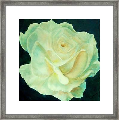 Yellow Rose 2 Framed Print by Dana Redfern