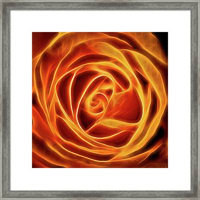 Framed Print featuring the photograph Yellow Rose Glow Square by Terry DeLuco