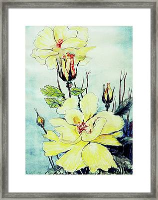 Yellow Rose In A Suffolk Breeze Framed Print by Joan Thewsey