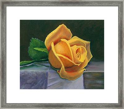 Yellow Rose Framed Print by Janet King