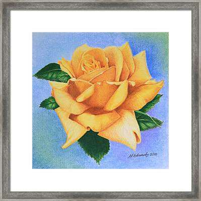 Yellow Rose Framed Print by Marna Edwards Flavell