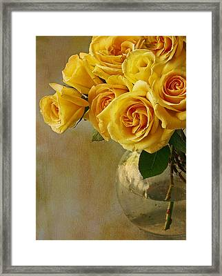 Yellow Rose Of... Framed Print