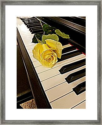 Yellow Rose On Piano Keys Framed Print