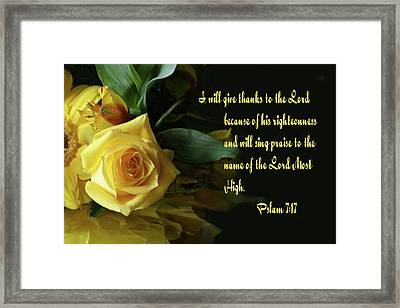 Yellow Rose Ps.7 V 17 Framed Print by Linda Phelps