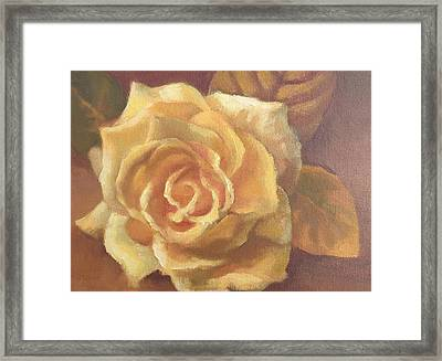 Yellow Rose Framed Print by Sharon Weaver