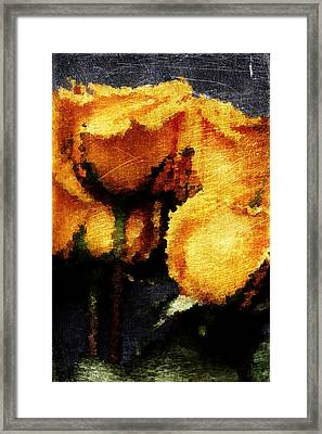 Yellow Roses Framed Print by Andrea Barbieri