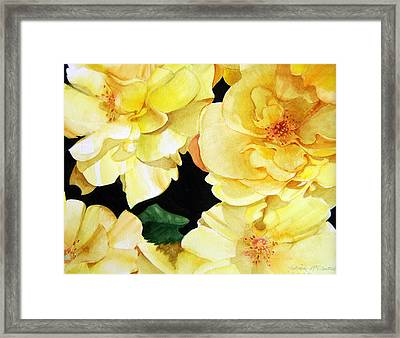 Yellow Roses Framed Print by Patrick McClintock