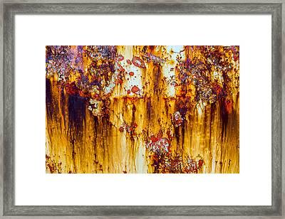 Yellow Rust Framed Print