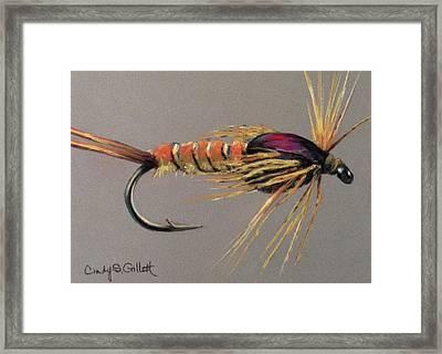Yellow Sally Stonefly Nymph Framed Print