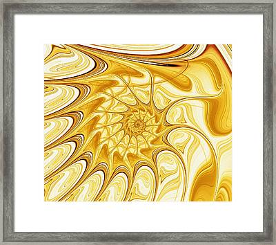 Yellow Shell Framed Print