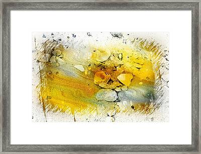 Yellow Shells Framed Print by Kathleen Struckle