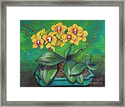 Yellow Spotted Orchid Framed Print