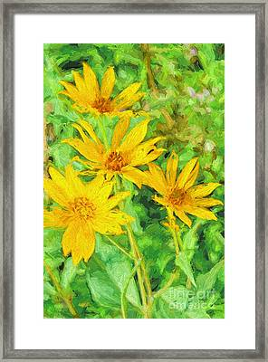 Yellow Summer Wildflowers I Framed Print by Debbie Portwood