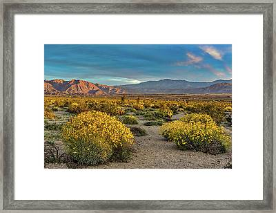 Framed Print featuring the photograph Yellow Sunrise by Peter Tellone