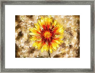Yellow Sunshine Framed Print by Shirley Stalter